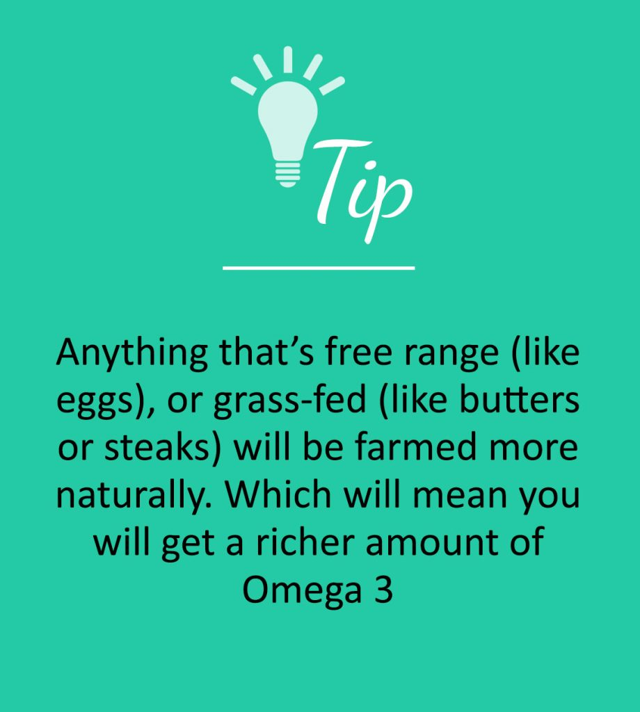 First Rate Fitness   Fat Tip Box - free range and grass-fed is the way of life